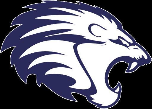 Zürich Lions Lacrosse Academics
